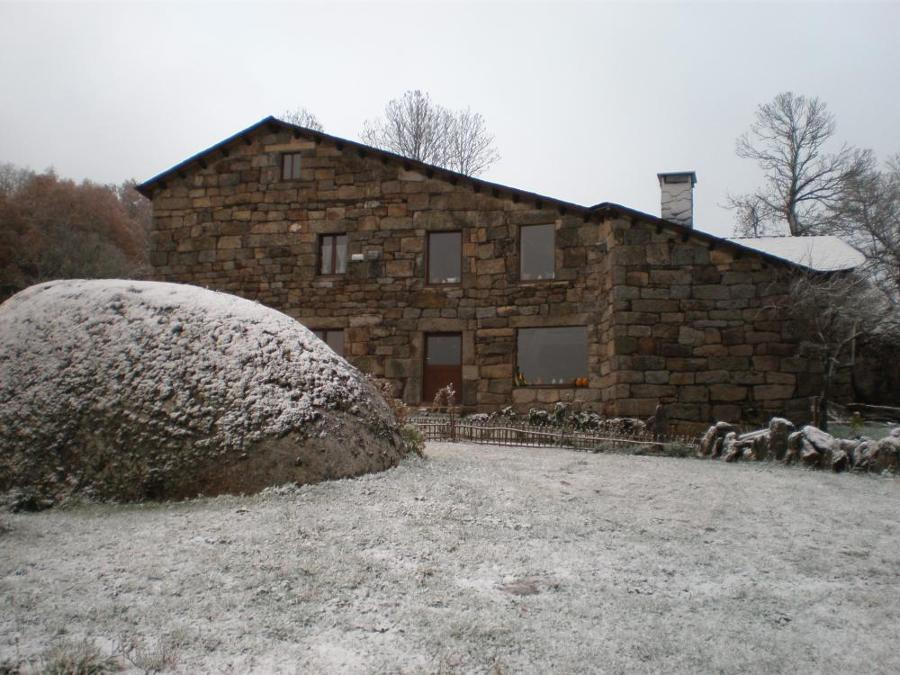 nevada1.jpg