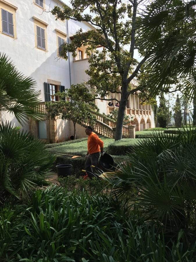 Mantenimiento de jardines finca raixa mallorca ideas for Mantenimiento de jardines