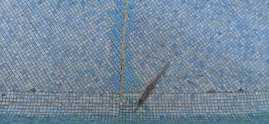 fisuraciones en piscina 235