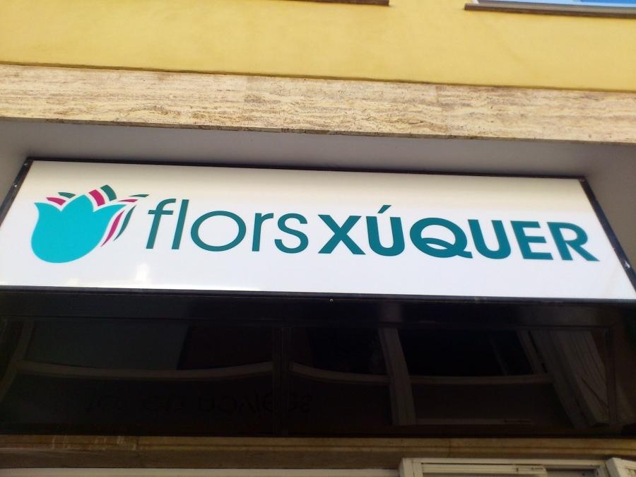 FLORS XÚQUER