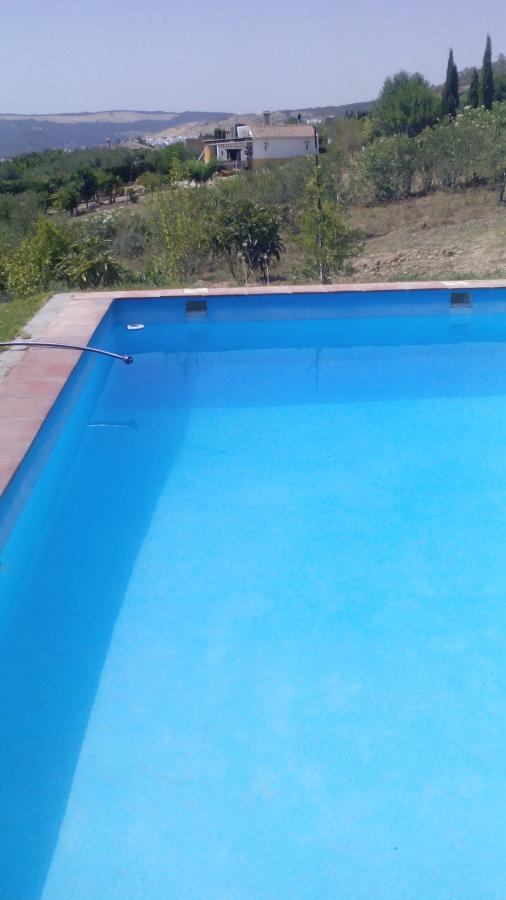 Reparaci n grietas piscina y colocaci n gresite ideas for Colocar gresite piscina
