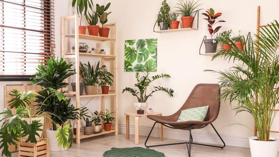 Habitación interior decorada como una terraza