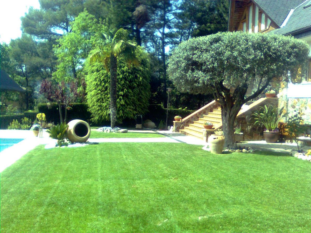 Mantenimiento de jardines ideas jardineros for Mantenimiento de jardines