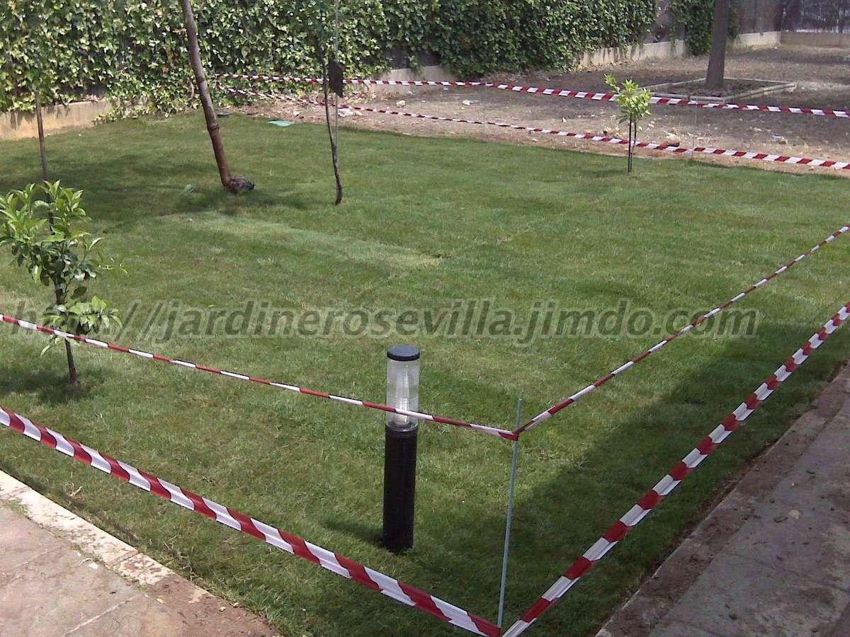 Instalaci n de riego y tepes ideas jardineros for Instalacion riego jardin
