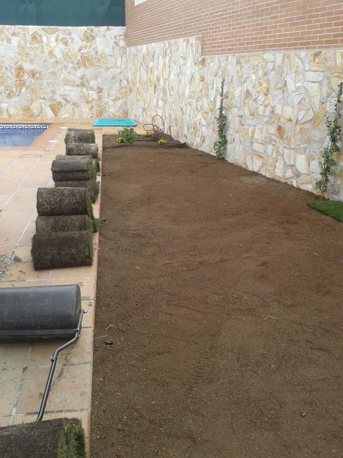 Instalaci n de tepe y riego autom tico en madrid ideas for Instalacion riego automatico jardin