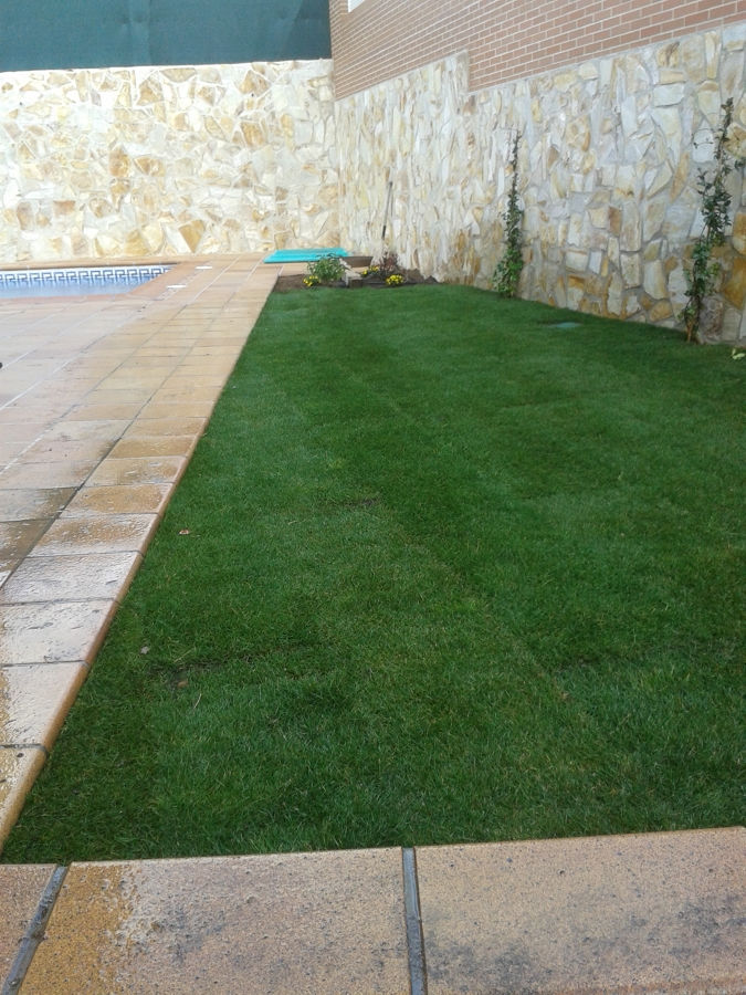 Foto instalaci n de tepe y riego autom tico de jardineria for Instalacion riego jardin