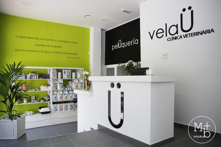 Foto interior cl nica veterinaria de m b estudio 1015579 - Clinicas veterinarias ourense ...