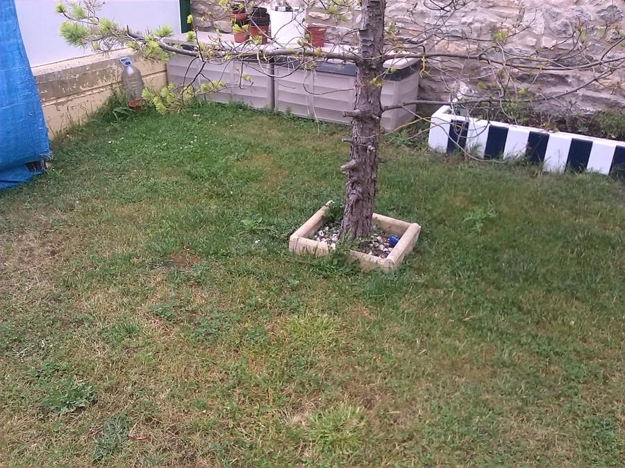 Foto jard n de pavimentos y pulidos gorbelan s l u - Pavimentos de jardin ...