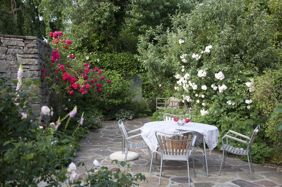Gu a sencilla para crear un para so en tu jard n ideas for Como arreglar un jardin pequeno