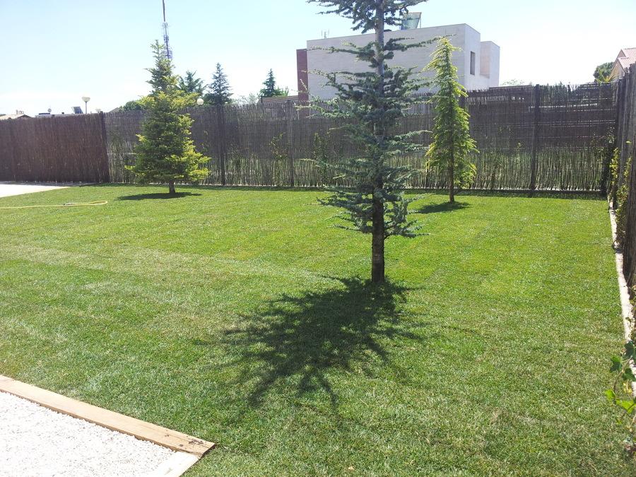 Jardín acabado