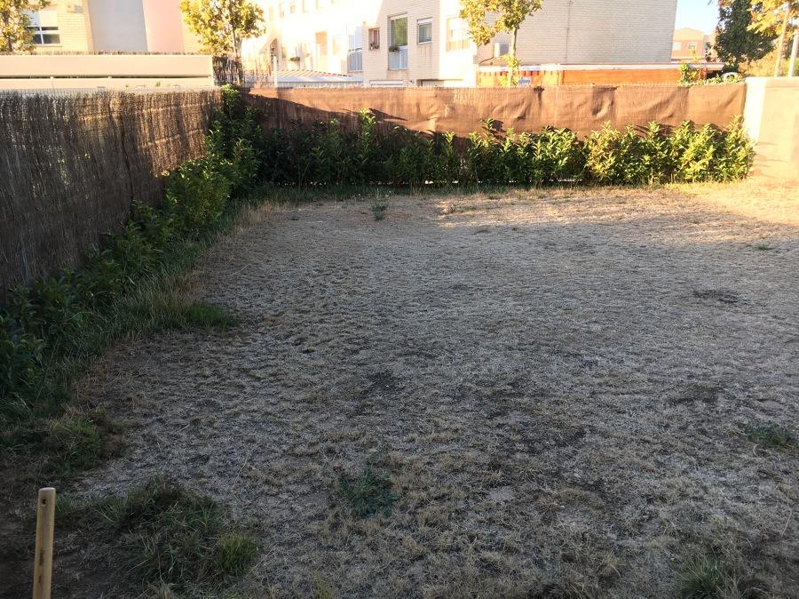 Jardín antes de los trabajos.