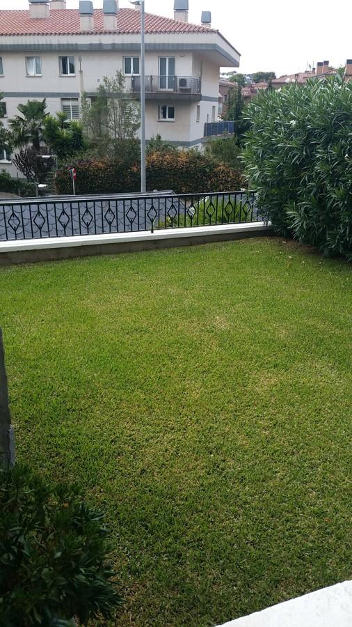 Jardin grama