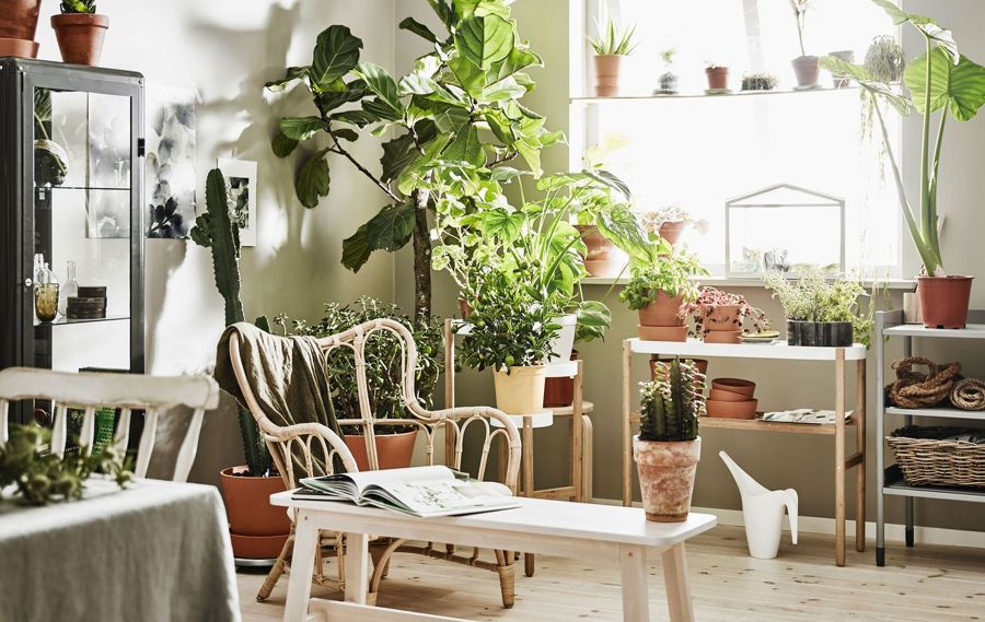 jardín interior con productos IKEA