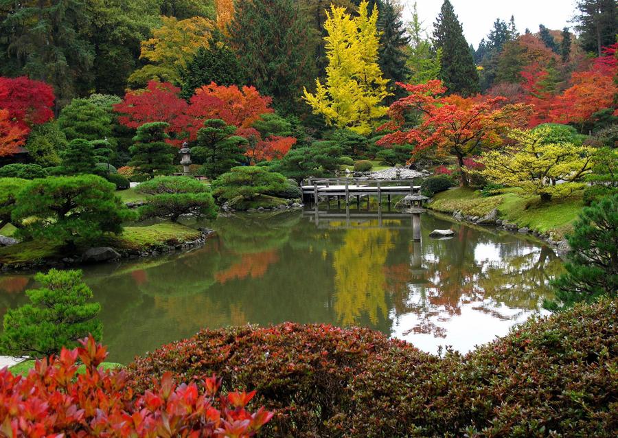 Foto Jardín Japonés de Elenatorrente Díaz #846082  Habitissimo