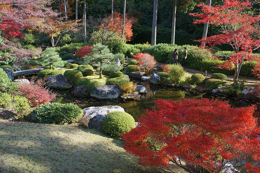 Foto jard n japon s de elenatorrente d az 846089 for Jardin japones piscina