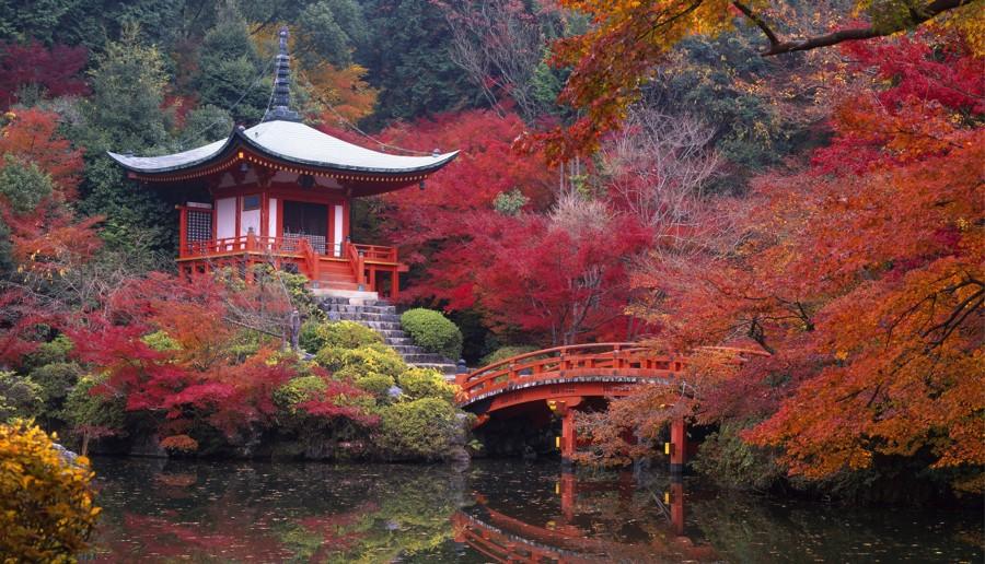 Foto Jardín Japonés de Elenatorrente Díaz #846091  Habitissimo