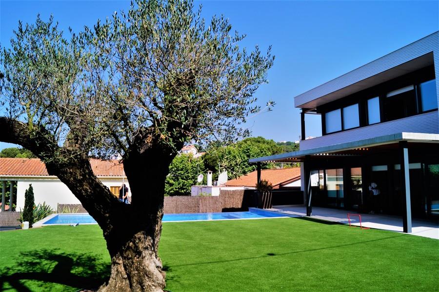 Jardín/piscina
