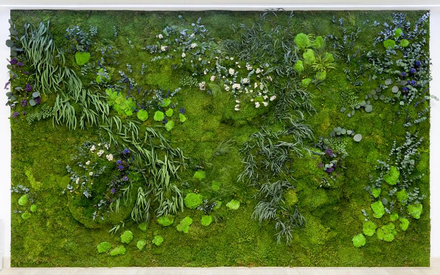 Foto jard n vertical de solodecora 1164442 habitissimo for Jardin vertical castellon