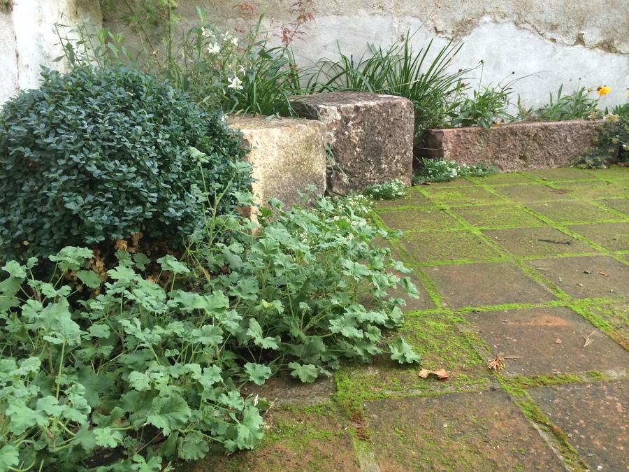 Jardinera con piedras talladas y plantación seleccionada cuidadosamente