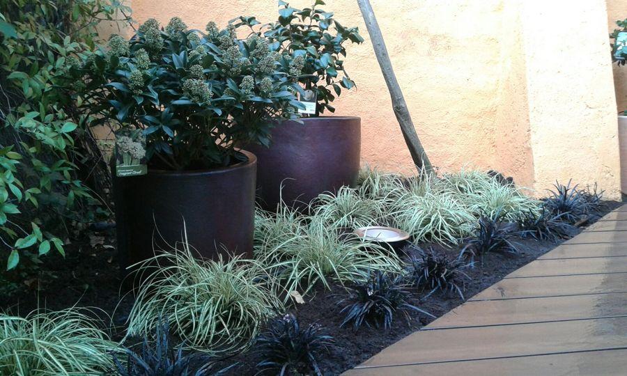 Jardinera en el patio posterior
