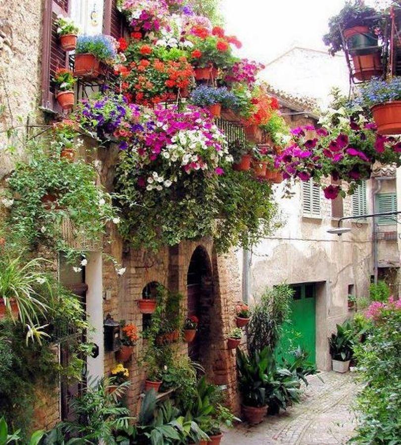 jardinería en fachadas