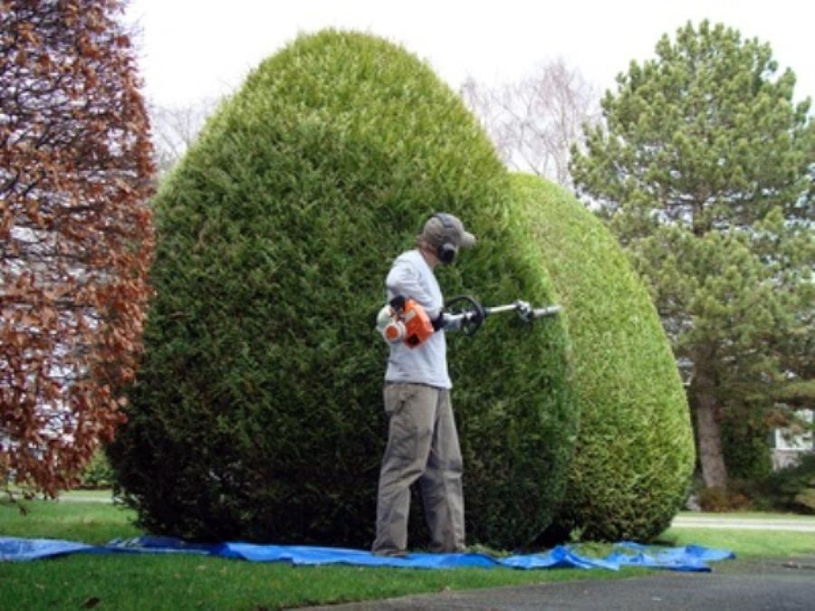 Jardinería para comunidades