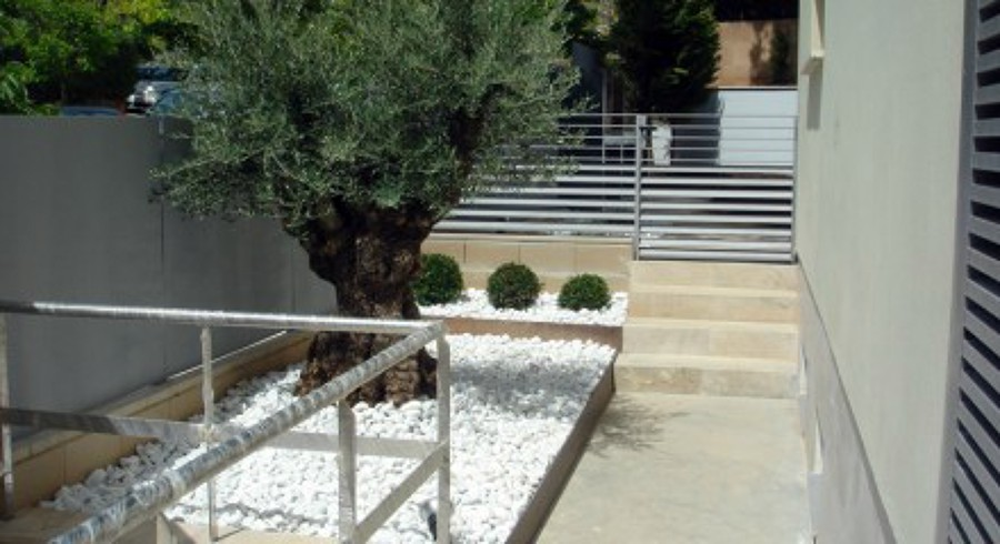 Foto jardines para adosados de j p design 463940 habitissimo - Cesped japones fotos ...