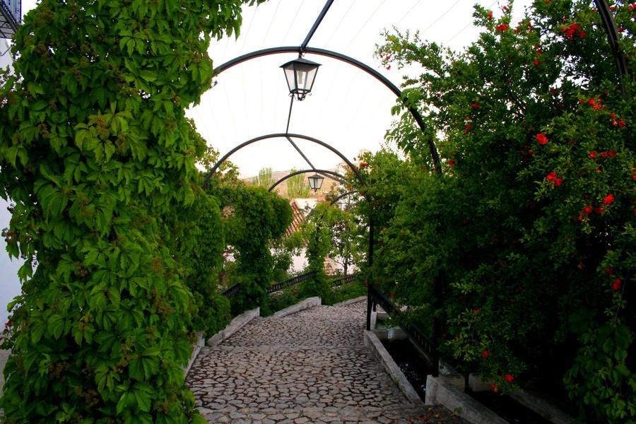 La rosaleda de acceso a la calle de Los Arcos