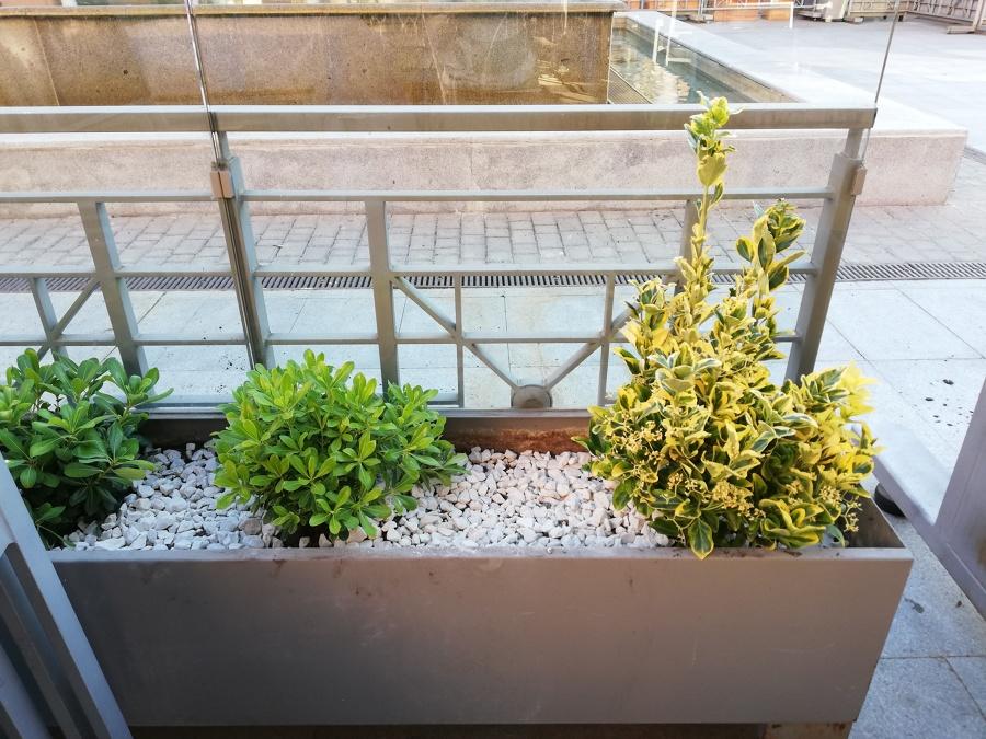 Lado derecho de la terraza