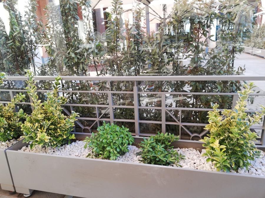 Lado izquierdo de la terraza