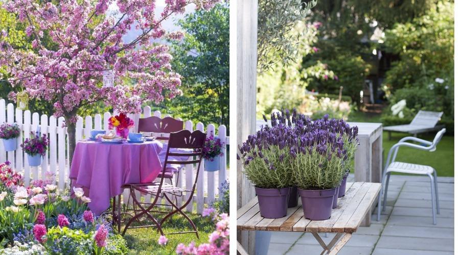 Plantas arom ticas que perfumar n tu jard n todo el a o for Como evitar que salga hierba en el jardin