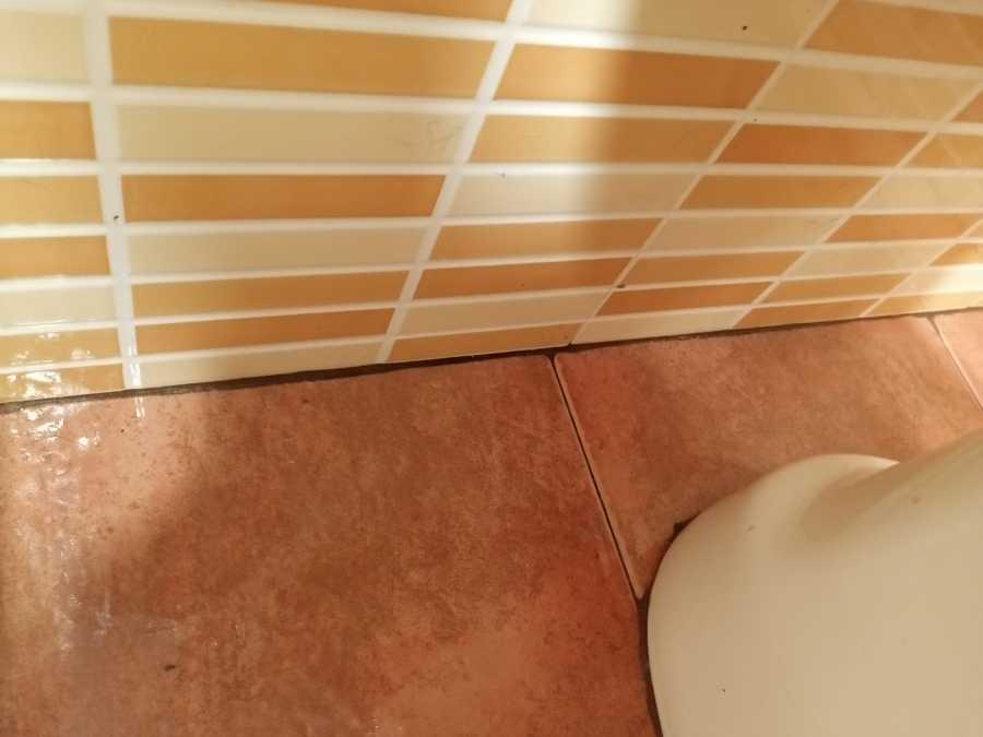 Baño Madre Paki Despues.jpg