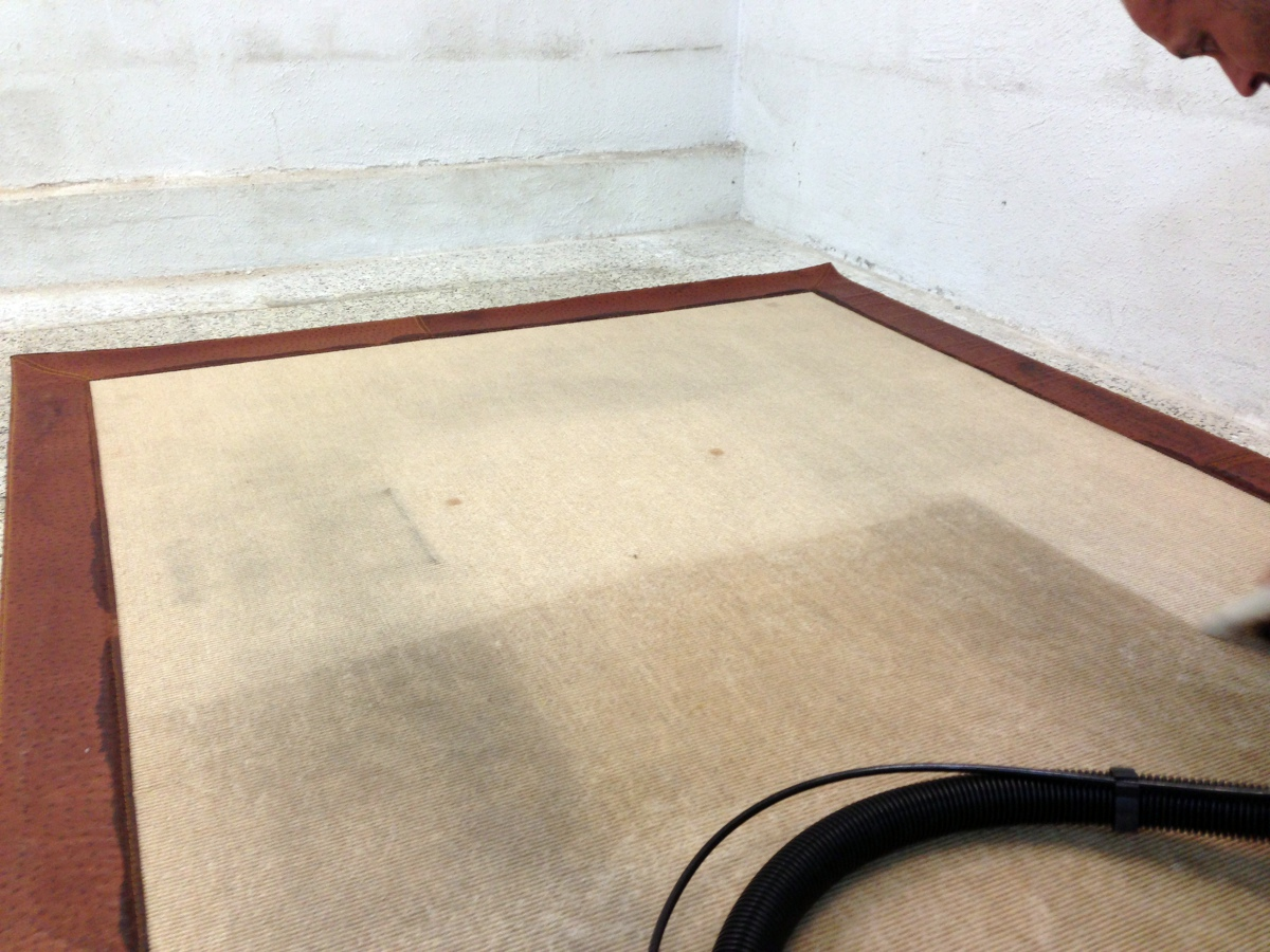 Servicios de limpieza ideas limpieza - Limpiador de alfombras ...