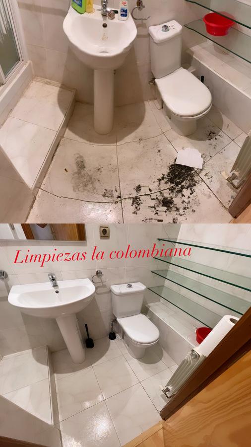 Limpieza de baño, casa desocupada.