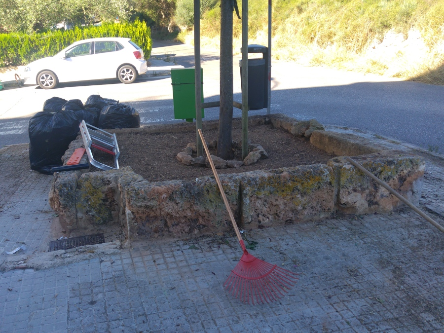 Limpieza de hierbas en jardineras...