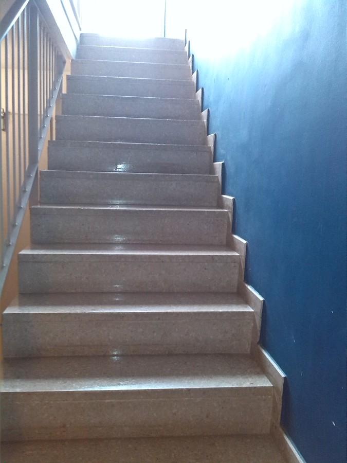 Limpieza escaleras acceso II