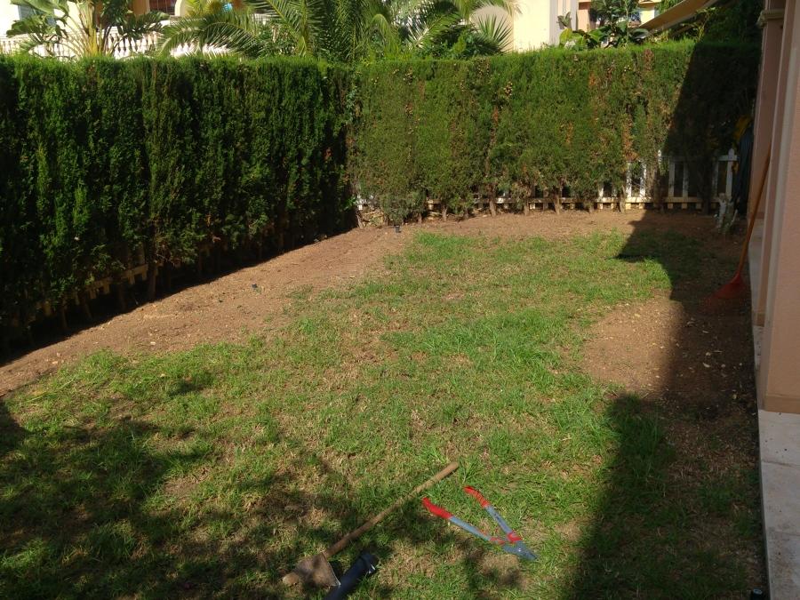 limpieza jardín...