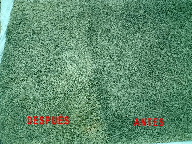 Foto limpieza moqueta alfombras tapices de higiene - Limpieza de alfombras de lana ...