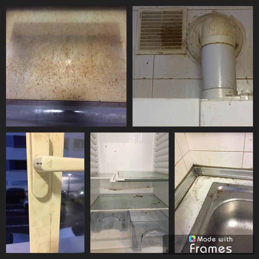 Limpiezas generales en viviendas