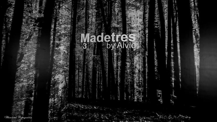 Logo Madetres