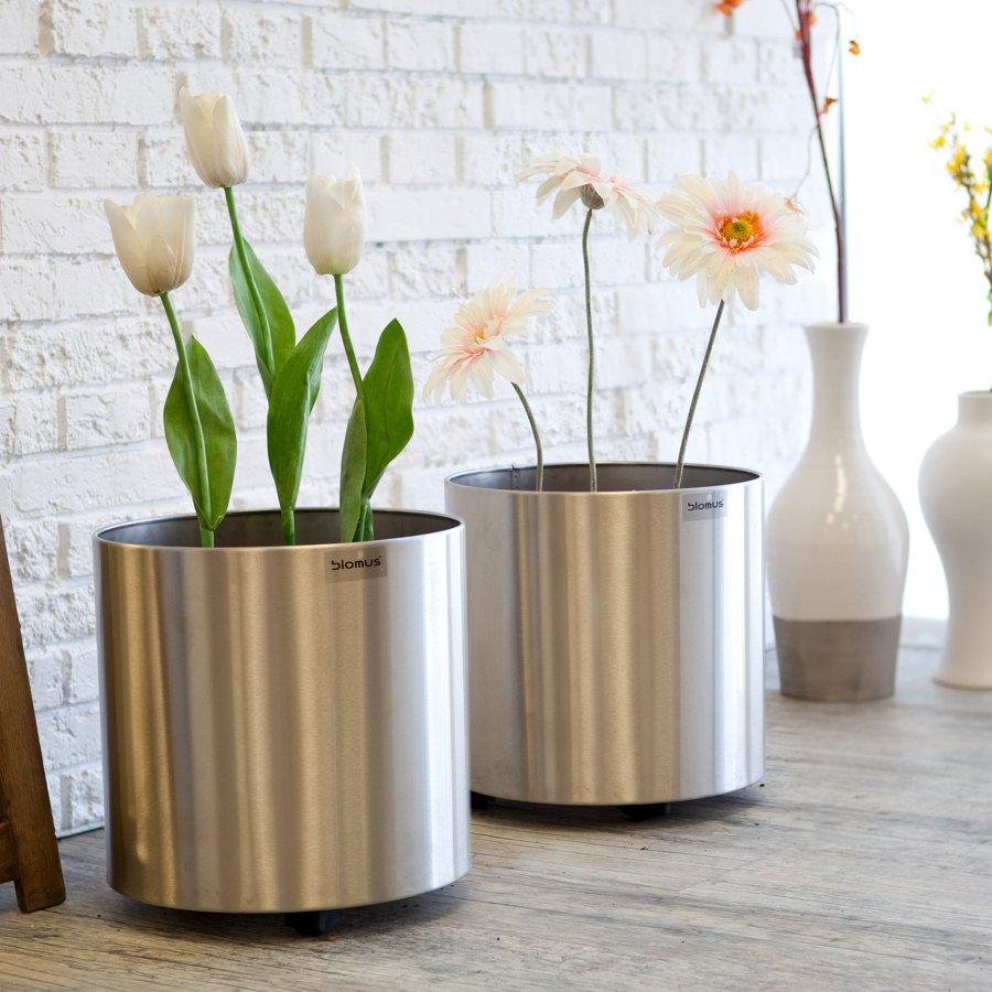 C mo cuidar tus plantas de interior ideas jardineros - Maceteros modernos de interior ...