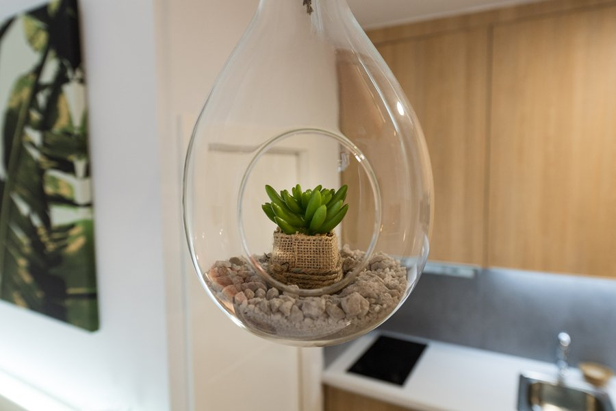 Macetero con plantas colgantes DIY
