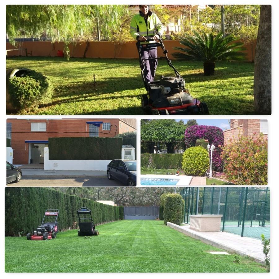Servicios de jardiner a ideas jardineros - Servicios de jardineria ...