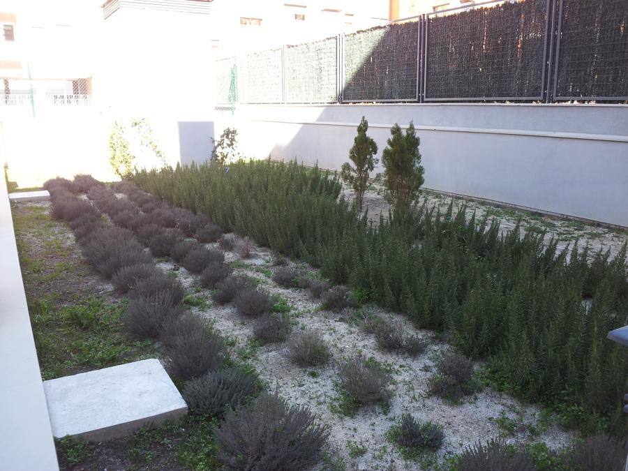 Mantenimiento de piscinas y jardines ideas jardineros for Mantenimiento jardines