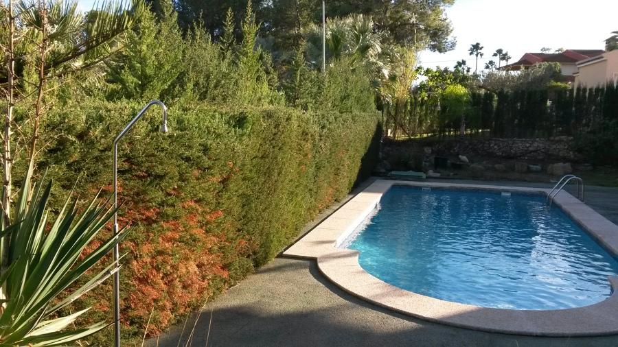 Mantenimiento de piscina y jardín