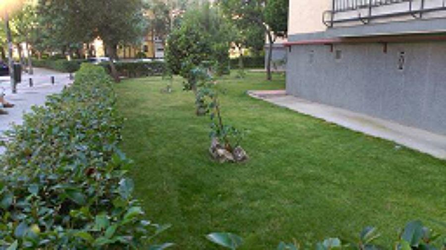 Creaci n y mantenimiento de jard n en aluche madrid - Jardin sin mantenimiento ...