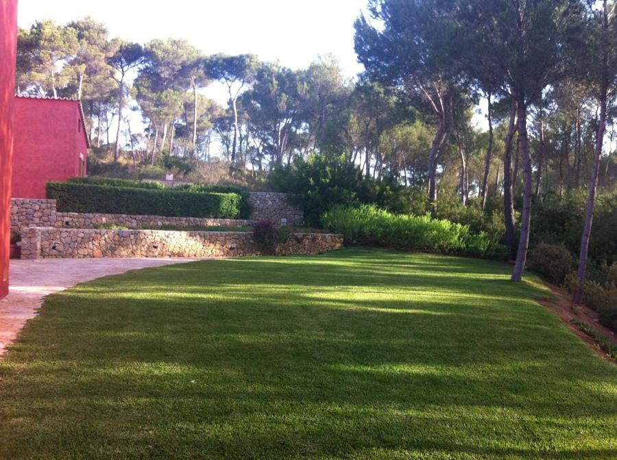 Mantenimiento De Jardines Y Areas Verdes Mantenimiento De