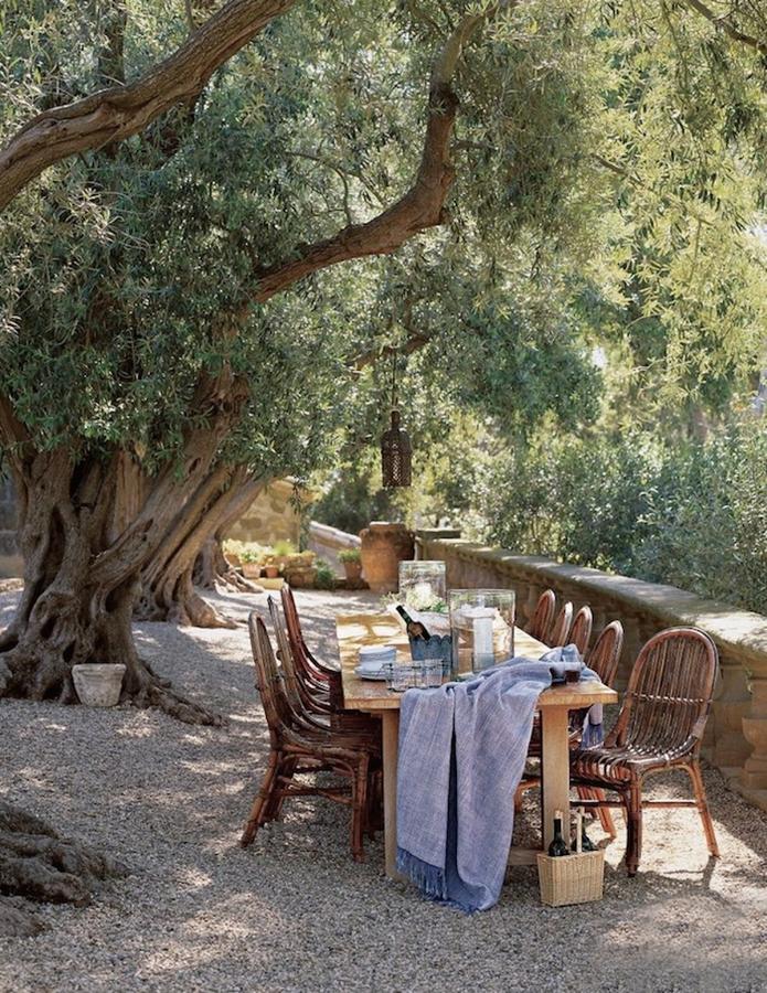mesa de comedor bajo los árboles