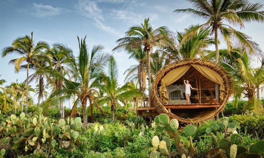 casa de árbol hecha de bambú