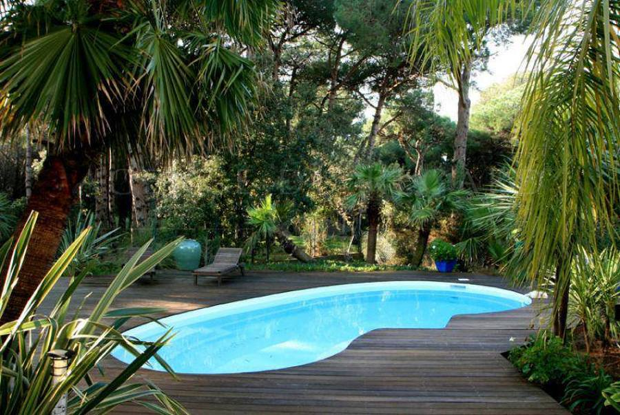 Foto piscina prefabricada tropical de miriam mart for Piscine jardin tropical